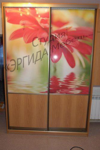 Шкаф-купе, стекло с фотопечатью